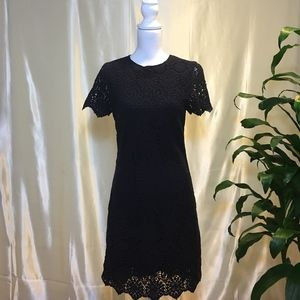 Tory Burch Navy Blue Dress
